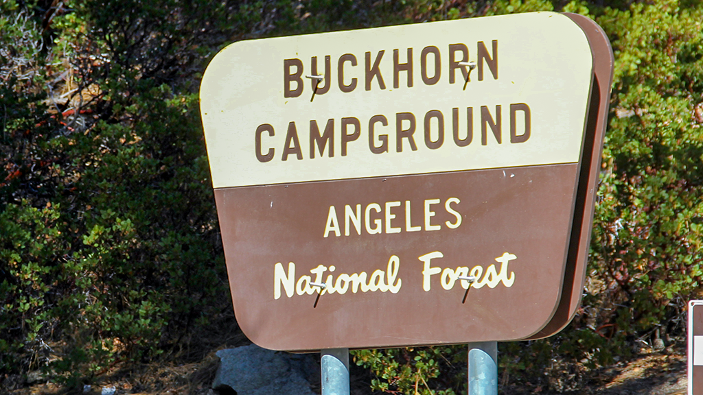 Buckhorn is a high country campground and is our most popular
