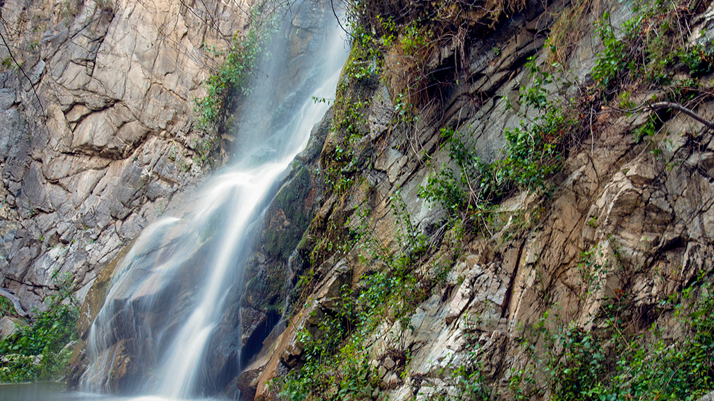 Sturtevant Falls is one of the many natural waterfalls in the national forest